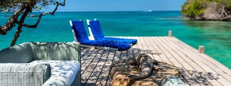 Coralina Island Cartagena 5